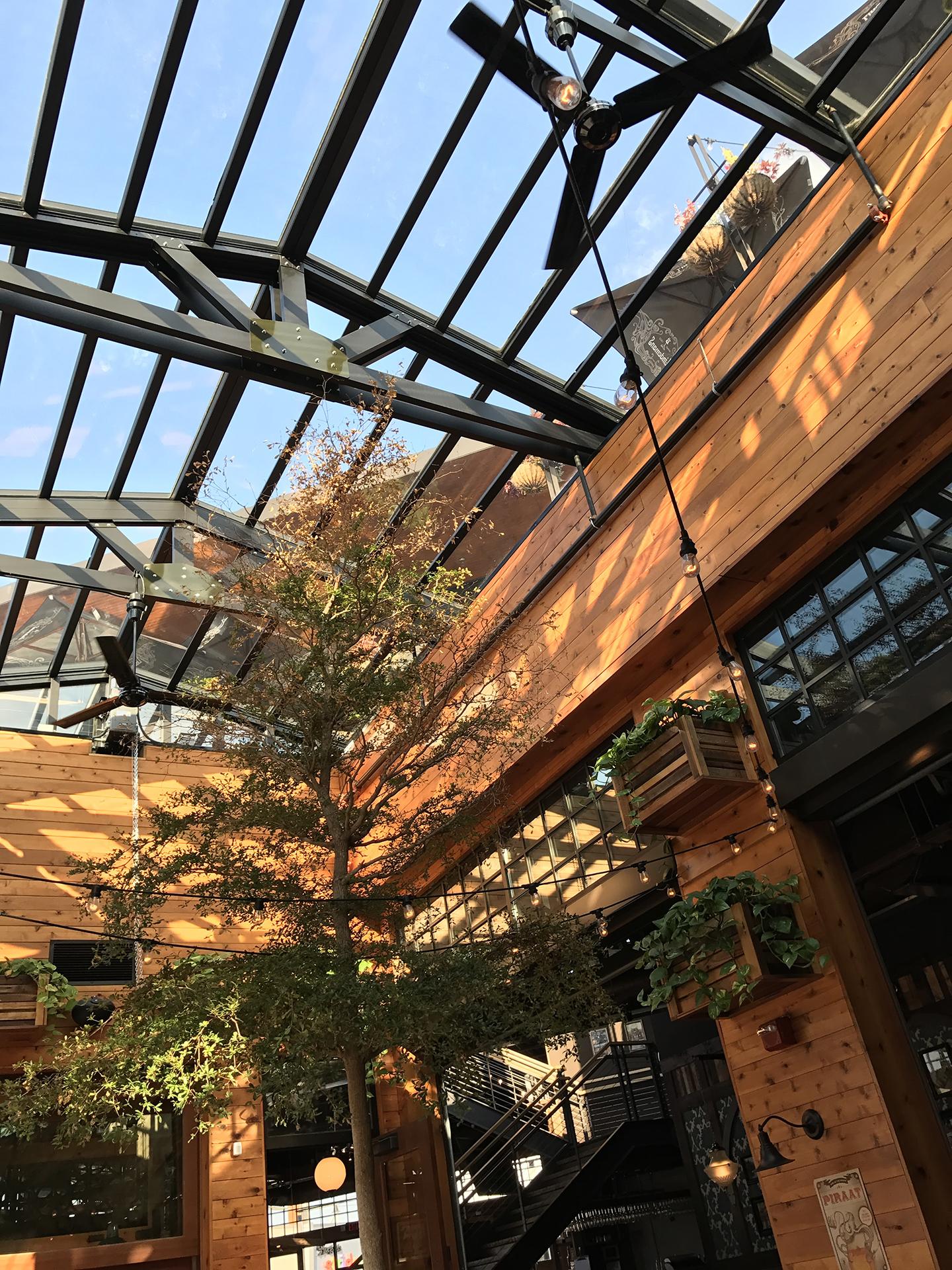 Transparent patio roof