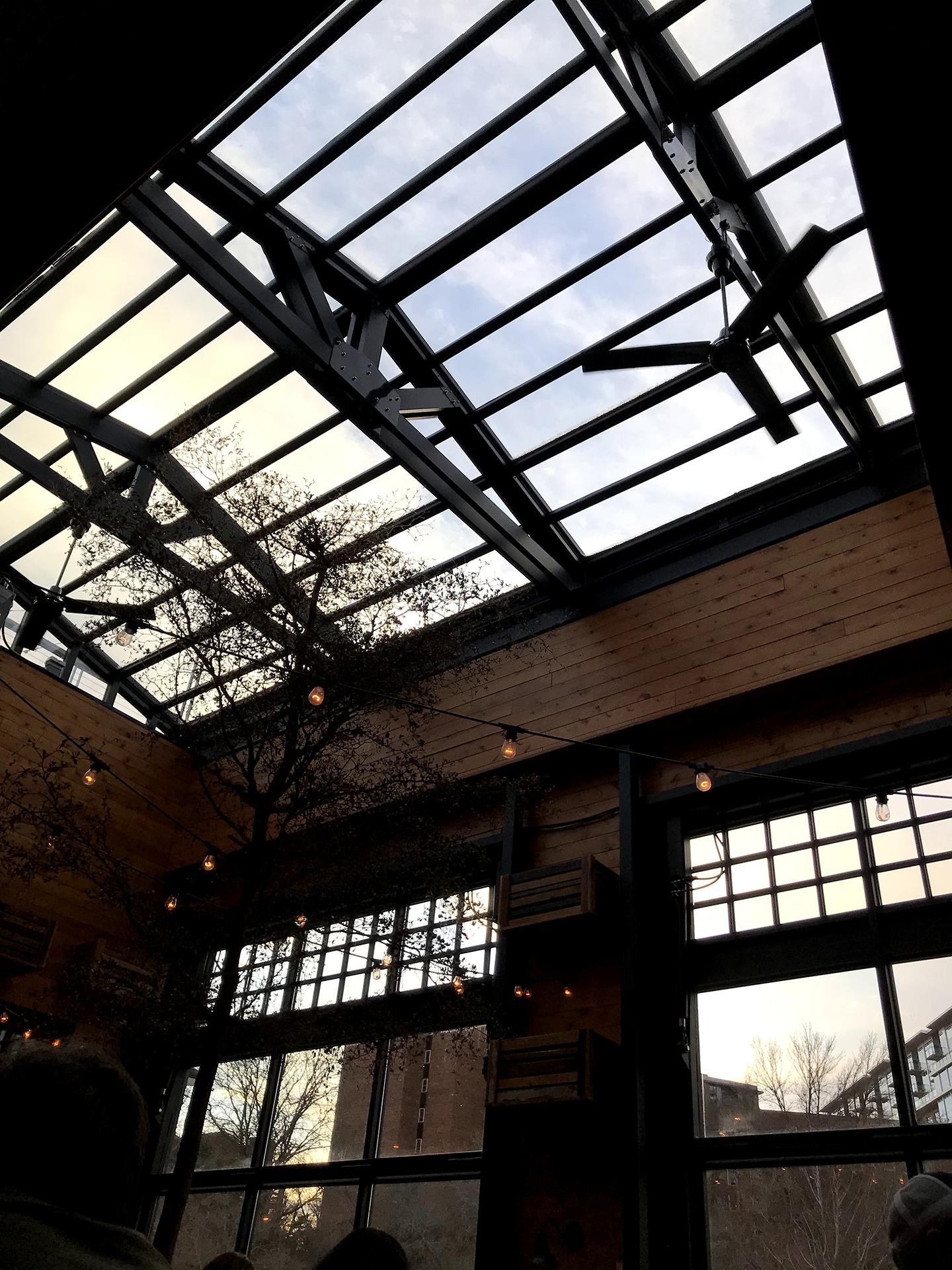 Skylight patio roof
